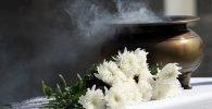 Limpieza con flores blancas