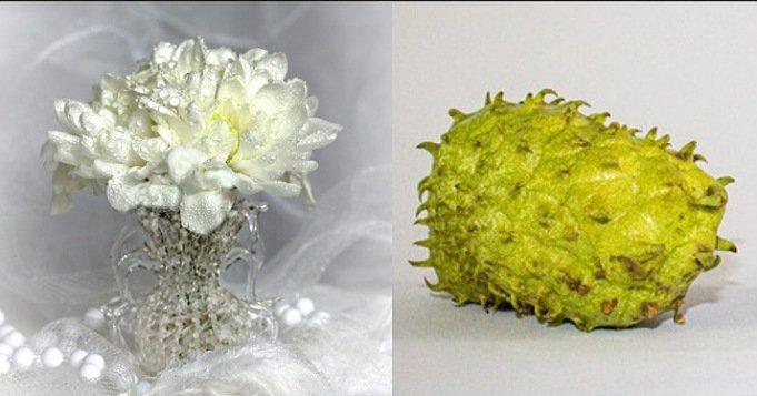 Ofrenda de flores y guanábana para Obatalá