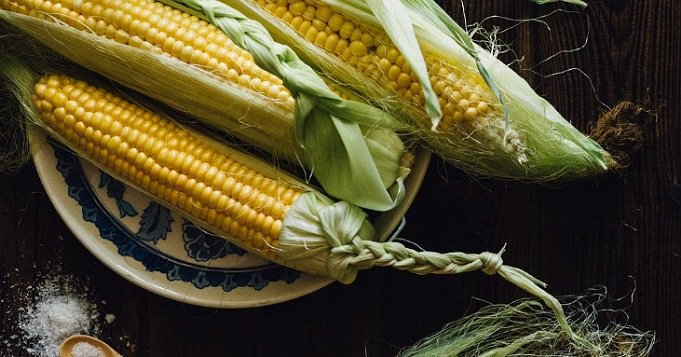 Mazorcas de maíz santería