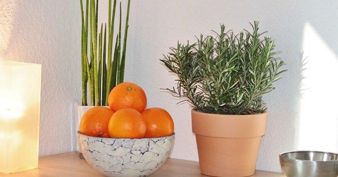 Spray para el hogar de naranja y romero