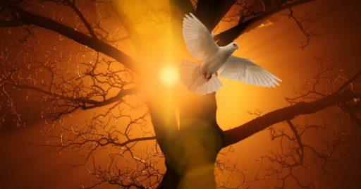 Rezos al espíritu santo